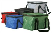 12 Can Size Cooler Bag