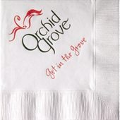 3 Ply White Beverage Napkins