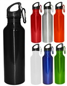Carbiner Drink Bottle