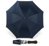 Silver Lined Umbrella